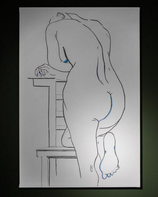 mākslinieces sintijas gādigas zīmēts sievietes kailķermenis ___ogle uz balta audekla ar ziliem akcentiem.